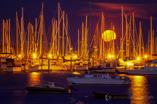 Moon Photography: Moonrise over the Oak Bay Marina, in Victoria, British Columbia, by Anne McKinnell