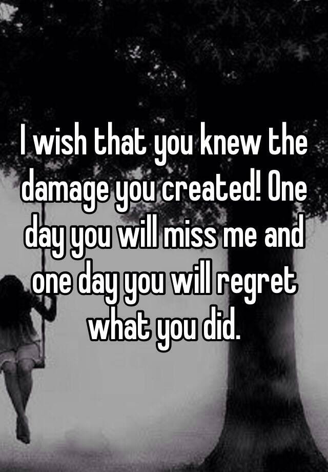 I Wish That You Knew The Damage You Created One Day You Will Miss