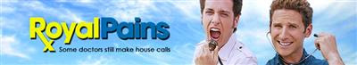 Royal Pains S05E09 480p HDTV x264-mSD