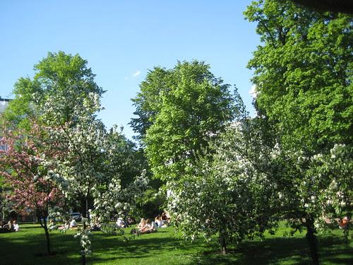Vanha kirkkopuisto, Helsinki