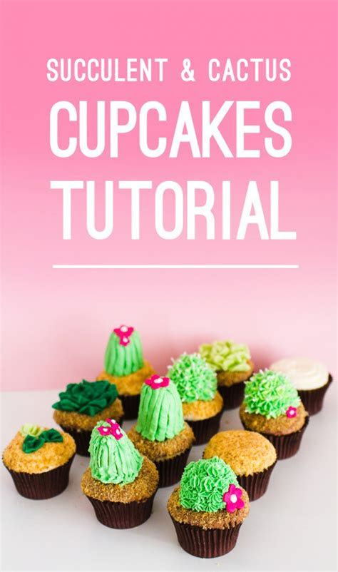 SUCCULENT AND CUPCAKE TUTORIAL DIY WITH TWO LITTLE CATS