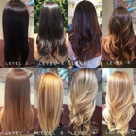 aveda color chart google search aveda haarfarbe balayage haarfarben charts