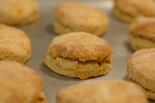 Sweet Potato Biscuits Cooling From Oven