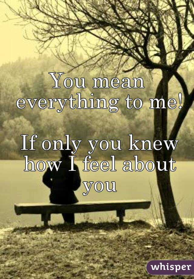 You Mean Everything To Me If Only You Knew How I Feel About You