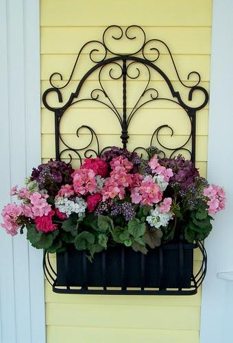 Flowers, anyone??