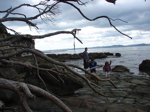 beach exploring