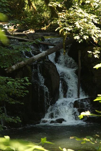 Crystal Pool Falls, McDowell Creek