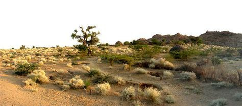 Barmer Tourist Places Barmer Sightseeing   Places to Visit