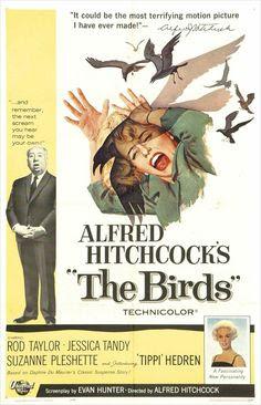 """The Birds (1963) """"Os Pássaros"""""""
