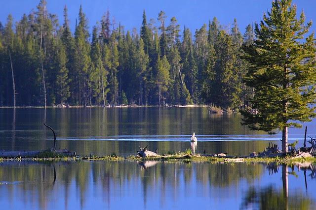 IMG_1795 Heron Pond