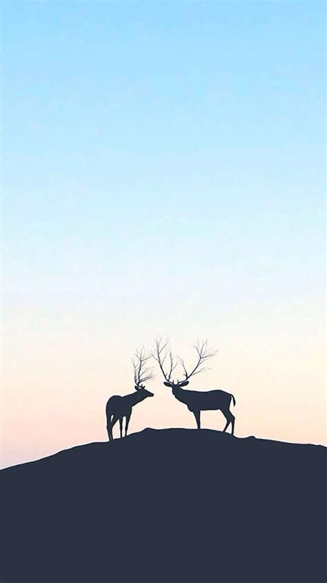 deer iphone wallpaper iphone wallpapers