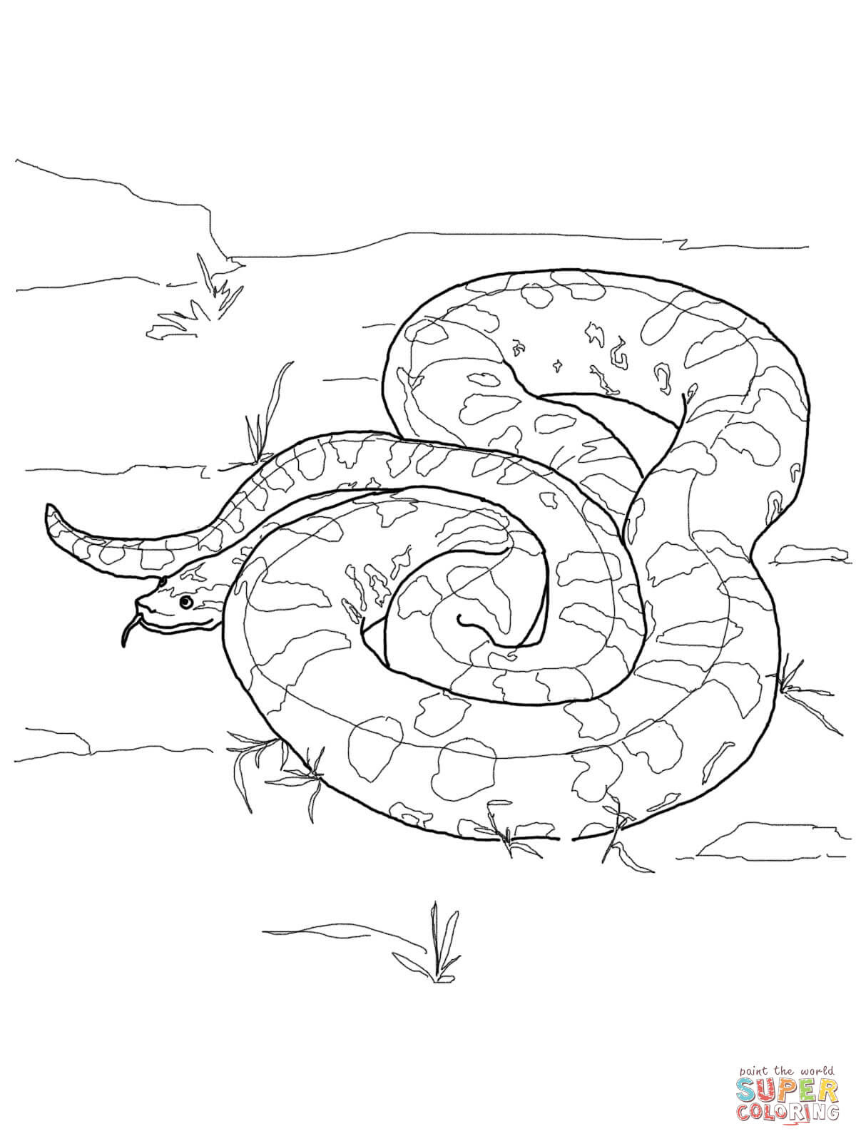 er sur la Anaconda vert anaconda de Barbour coloriages