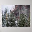 Snowy Day in Whistler, B.C.
