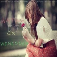 Waiting on Wednesday at Breaking the Spine