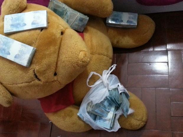 Urso continha dinheiro obtido em crimes financeiros (Foto: Polícia Federal, divulgação)