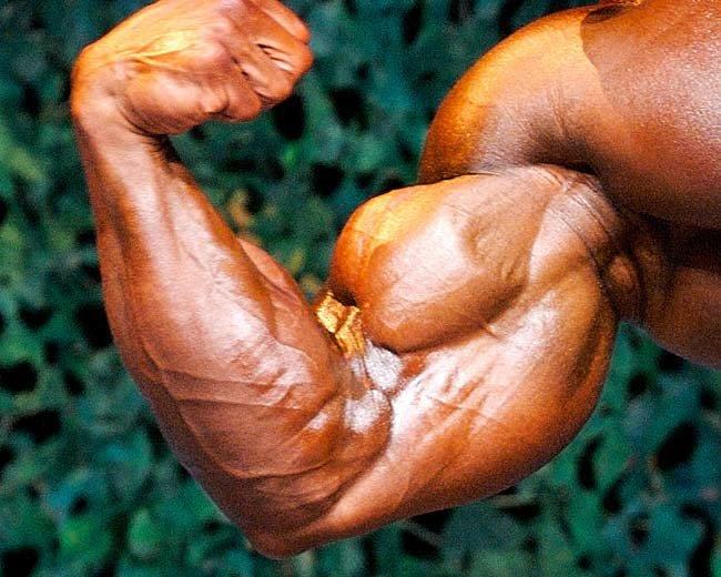 Building Huge Arms Super Feature: Biceps.