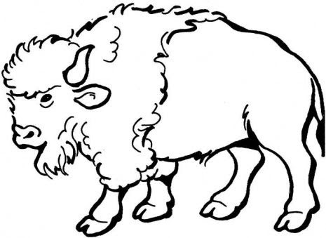 buffalo stamps to carve on clip art roosters and stingray tattoo
