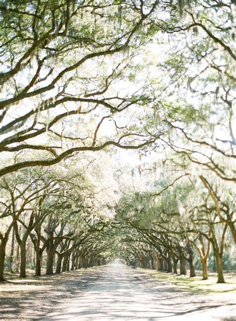 17 Best images about Savannah Wedding Venues on Pinterest