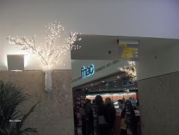livraria3.JPG
