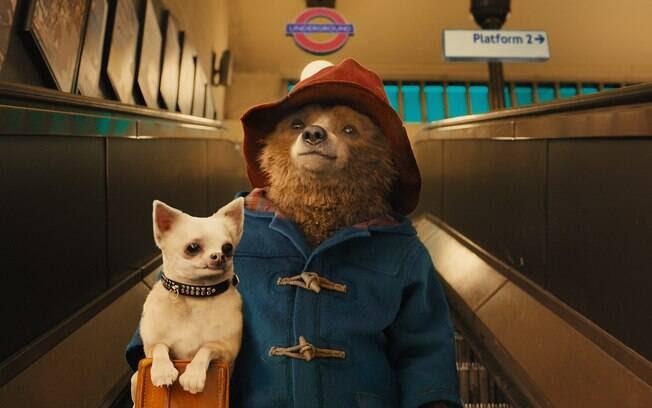 Resultado de imagem para ursos famosos do cinema