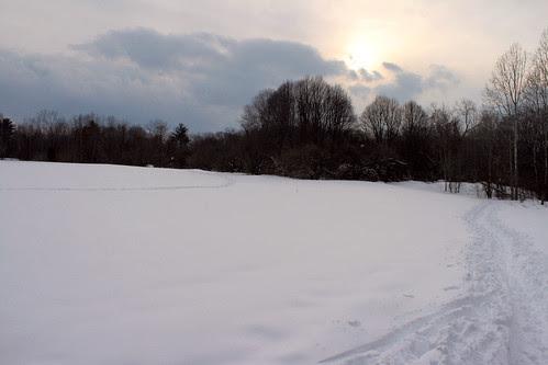 rock meadow snow 050 2