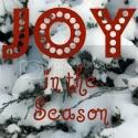 joy in the season