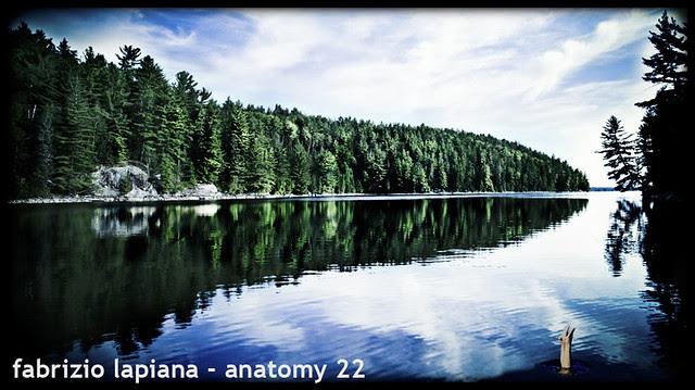 fabrizio lapiana - anatomy 22 art