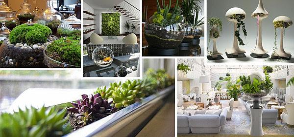 indoor gardening des