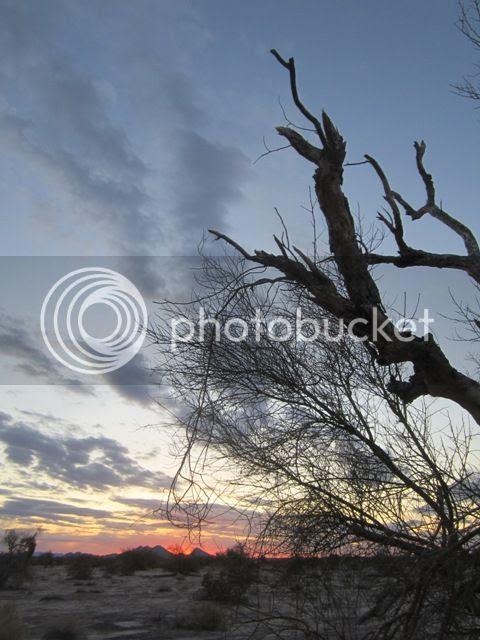 Sunrise photo SonoranMar2013712a_zps20cb695f.jpg