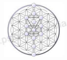 Psicogeometria Sitio Oficial Geometria Sagrada Arturo Ponce De