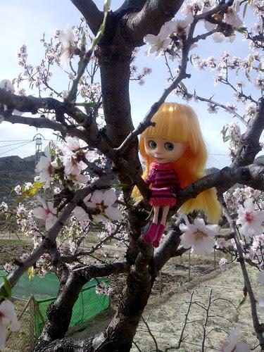 Laia viendo los almendros en flor