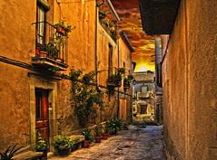 Viaje a la Segarra