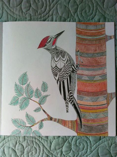 pencils km millie marotta animal kingdom woodpecker