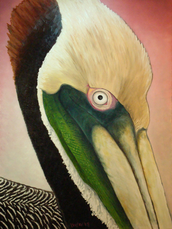 Final Painting - Pelican Peeking