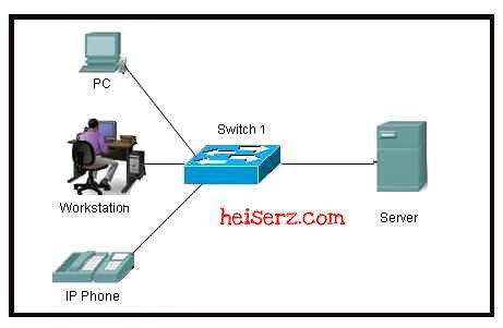 6625025169 29739a279c z ENetwork Chapter 2 CCNA 1 4.0 2012 2013 100%