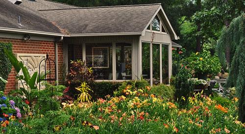 Daylily Garden 1