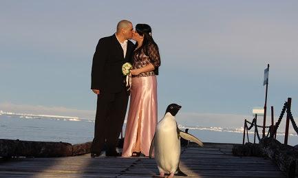 Matrimonio antártico. Foto di Leonardo Proverbio