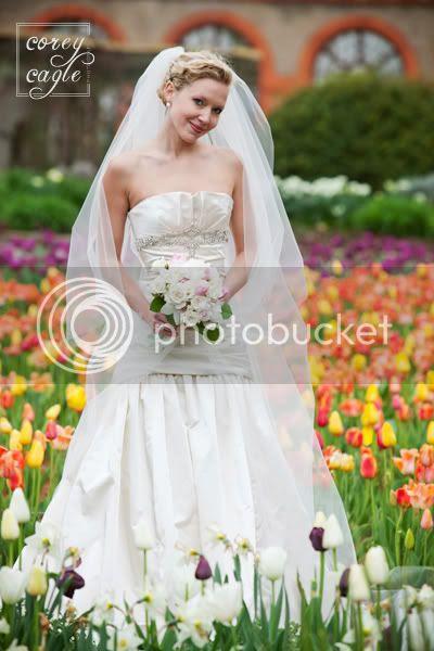 biltmore tulip festival wedding photo