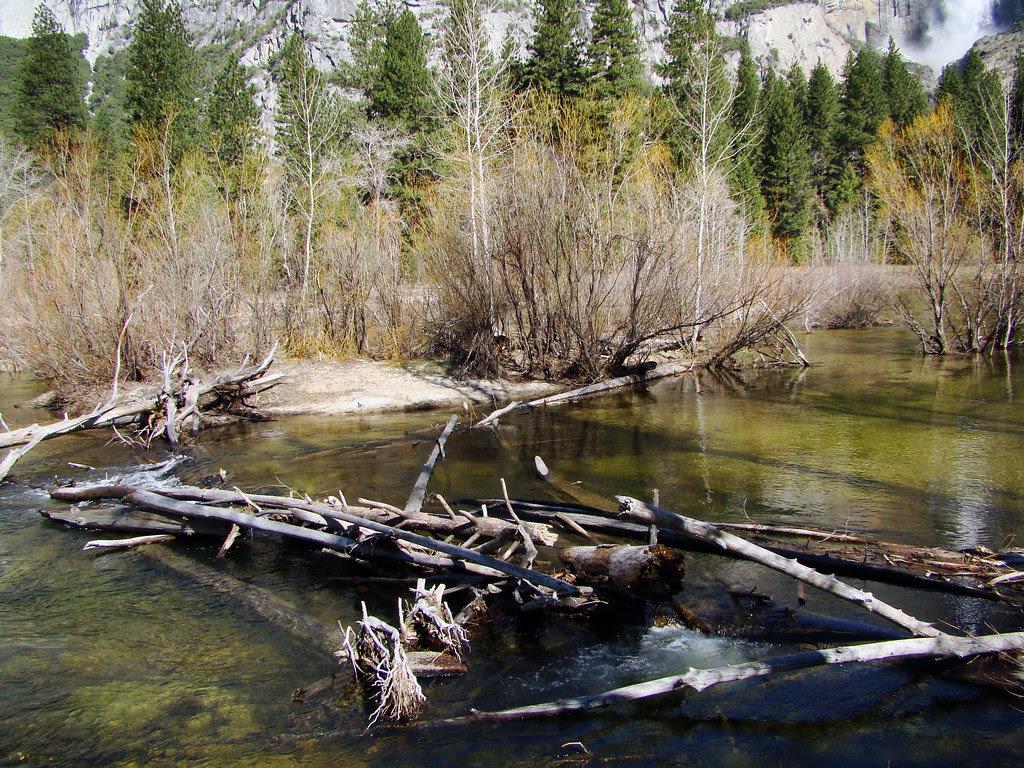 DSC04927 Yosemite Valley - Merced River