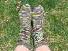 Socks on grass