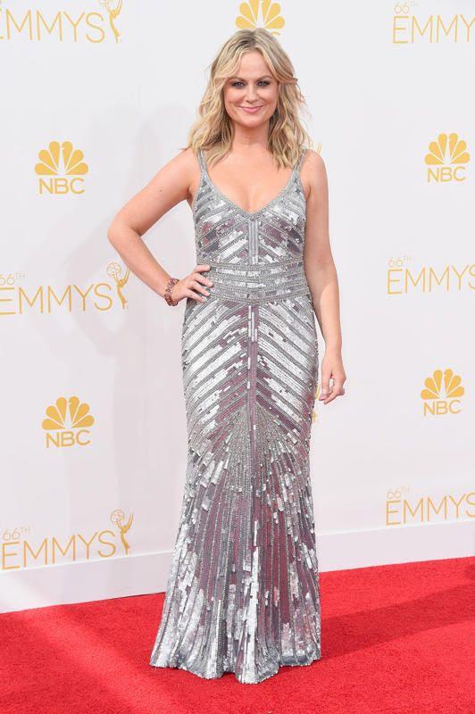 Amy Poehler photo 8def2b60-2cb2-11e4-8e7c-31b944828f19_Amy-Poehler-2014-primetime-Emmy-Awards.jpg