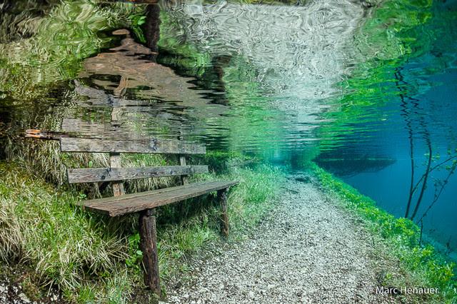 Pada musim bunga setiap tahun, taman ini hilang ditenggelami air. Hebat!
