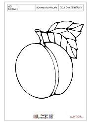 Meyveler Boyama Sayfalari