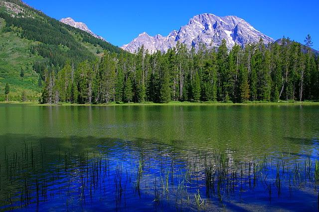 IMG_3839 String Lake