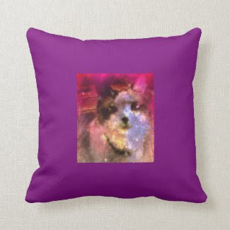 snowshoe aurora borealis kitty throw pillow