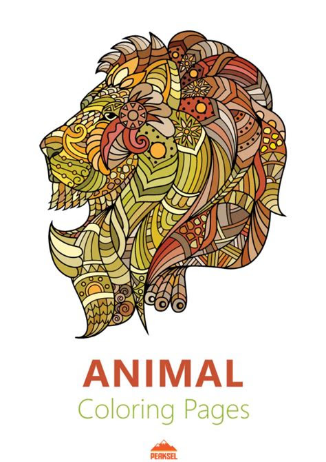 animal coloring pages   marko petkovic issuu