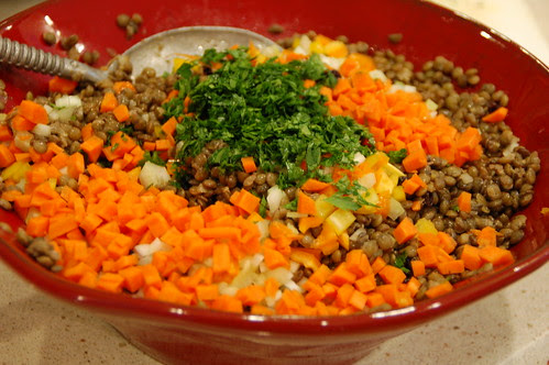 Lentil salad by Eve Fox, the Garden of Eating blog, copyright 2014
