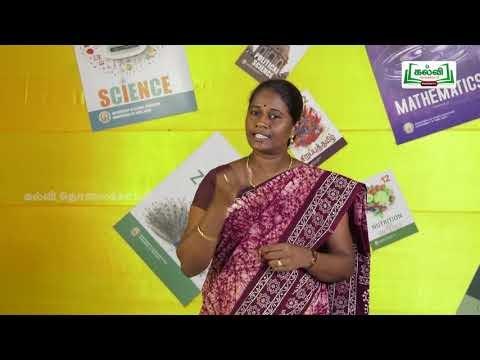 12th தமிழ் இலக்கியத்தில் மேலாண்மை Part 1 Kalvi TV