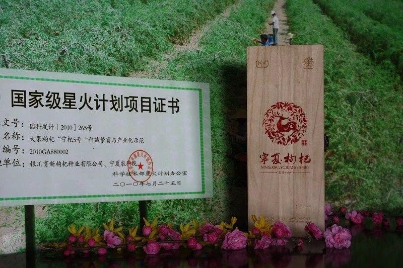 Resep Masakan Goji Berry Wolfberry Merah Gou Qi Zi Sdg R550 550 Butir 50g
