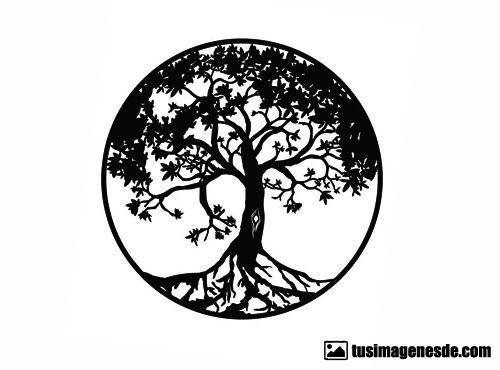 Imágenes De El árbol De La Vida Imágenes